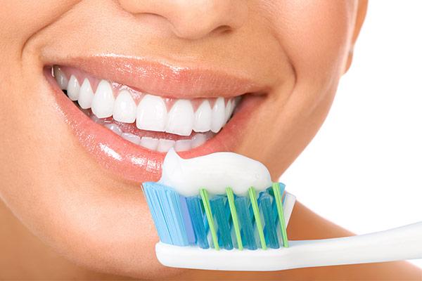 Les dents chez l'adulte